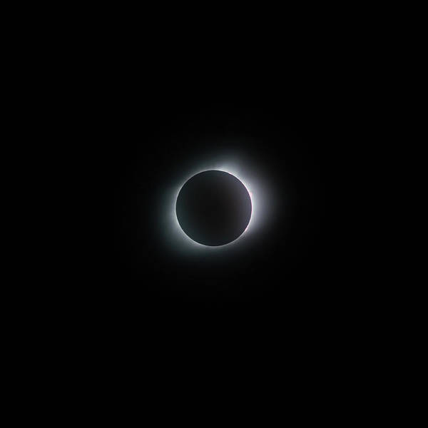 Photograph - In The Shadow - Total Solar Eclipse - 2017 - Usa  - Square by Gregory Ballos
