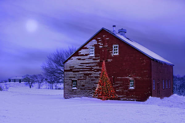 Wall Art - Photograph - In The Still Of The Night - After The Snow by Nikolyn McDonald