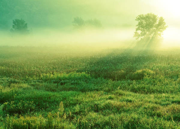 Photograph - In The Valley Of The Autumn Mist by Todd Klassy
