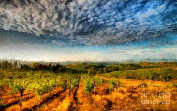 Photograph - In The Vineyard Winery Landscape by Edward Fielding