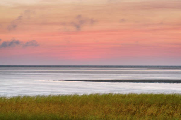Wall Art - Photograph - In The Wind by Michael Blanchette
