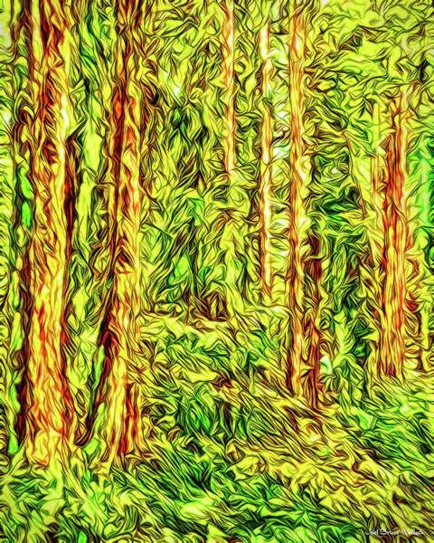 Digital Art - In The Woods - Forest Trees Vashon Island Washington by Joel Bruce Wallach