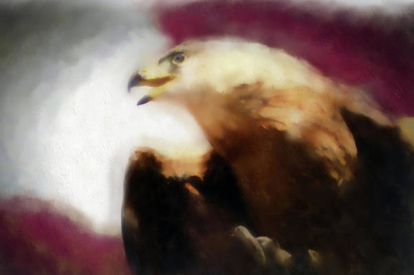 Digital Art - Independence Eagle by Barbara A Lane
