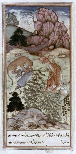1604 Photograph - India: Mughal Art, 1604-11 by Granger