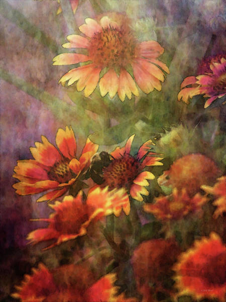 Photograph - Indian Blanket And Bee 4354 Idp_2 by Steven Ward