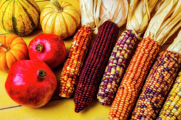 Wall Art - Photograph - Indian Corn And Pomegranates by Garry Gay