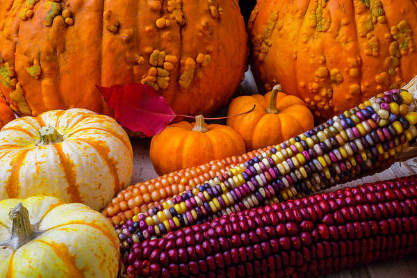 Wall Art - Photograph - Indian Corn With Knucklehead Pumpkins by Garry Gay