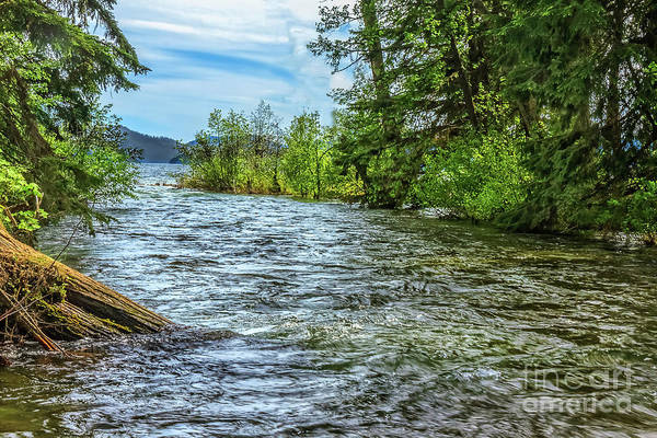 Priest Lake Photograph - Indian Creek by Robert Bales