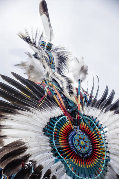 Photograph - Indian Feathers by Pamela Steege