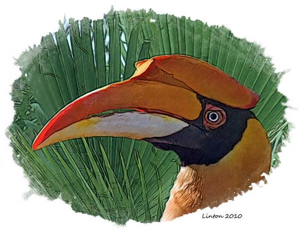 Digital Art - Indian Hornbill by Larry Linton