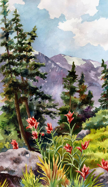 Trails Wall Art - Painting - Indian Paintbrush by Anne Gifford