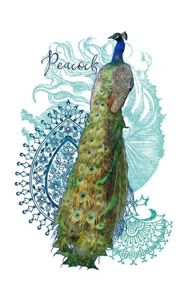Mixed Media - Indian Peacock Henna Design Paisley Swirls by Audrey Jeanne Roberts