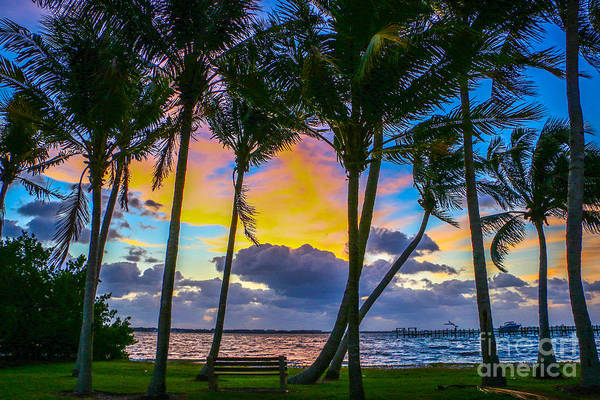 Art Print featuring the photograph Indian River Sunrise by Tom Claud