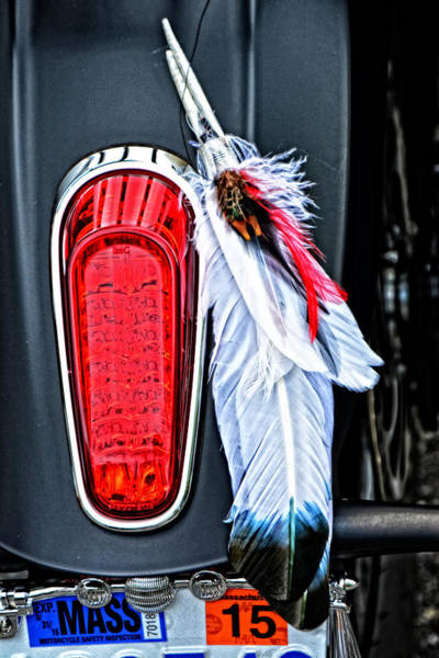 Wall Art - Photograph - Indian Tail Light Feathers by Mike Martin