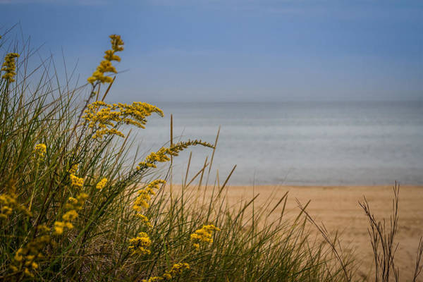 Photograph - Indiana Dunes On Lake Michigan by Ron Pate