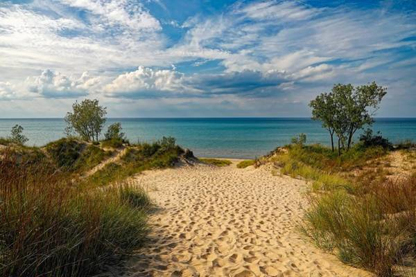 Wall Art - Photograph - Indiana Dunes State Park by Pixabay