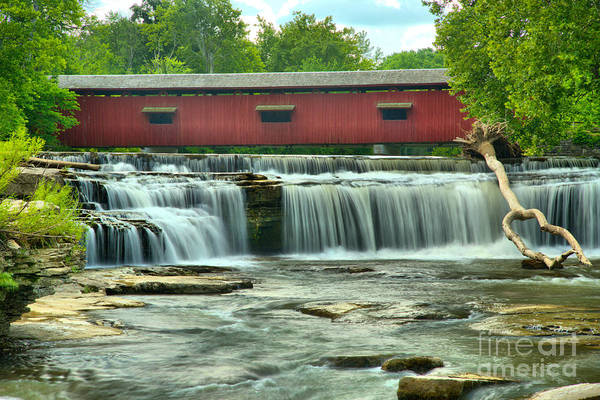 Photograph - Indiana Falls In Mill Creek by Adam Jewell