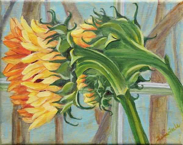 Indoor Sunflowers Art Print