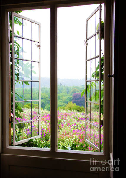 Photograph - Indoors Looking Our Through Window Into A Beautiful Garden by Maggie McCall