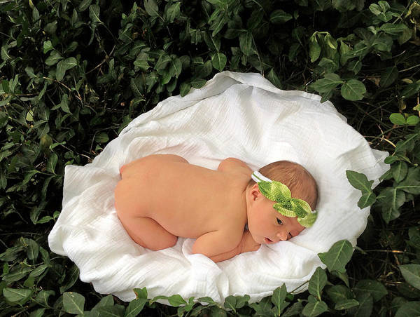 Photograph - Newborn Infant Lying In Ivy by Ginger Wakem