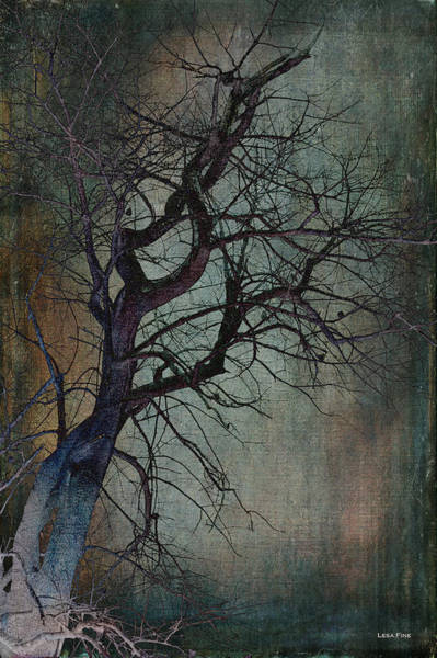 Infared Tree Art Twisted Branches Art Print