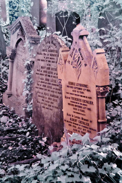Music Hall Stars At Abney Park Cemetery Art Print