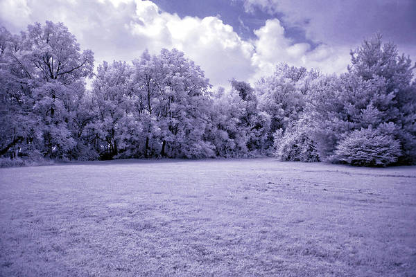 Wall Art - Photograph - Infrared In Glasgow Ky by Amber Flowers