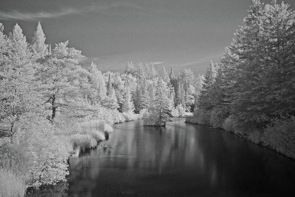 Wall Art - Photograph - Infrared In July 6015 by Michael Peychich
