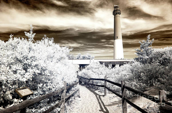 Photograph - Infrared Path To Old Barney At Long Beach Island by John Rizzuto