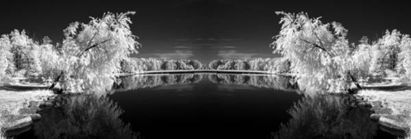 Photograph - Infrared Reflections by Dick Pratt
