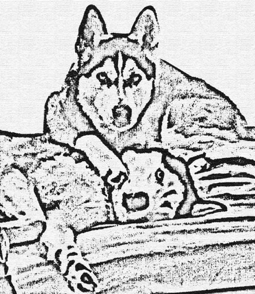 Painting - Ink Drawing Huskies by Mas Art Studio