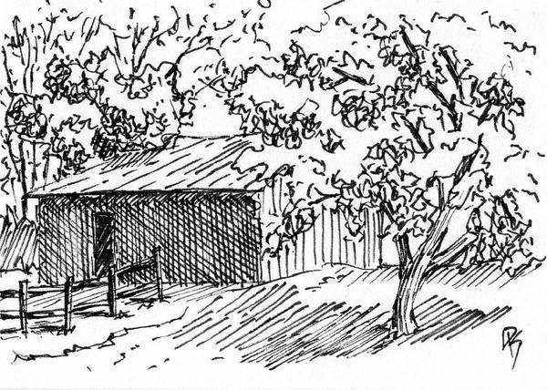 Homestead Drawing - Inktober 2017 No10 by David King