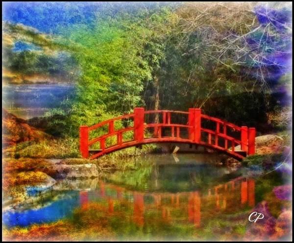 Photograph - Inner Bridges by Christine Paris