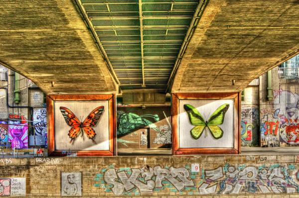 Photograph - Inner City Butterflies by David Birchall