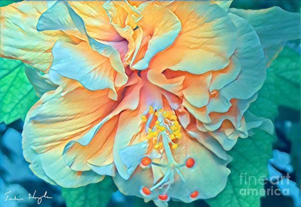 Bahamas Digital Art - Inner Glow by Julie Hoyle