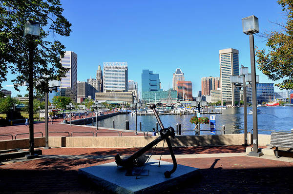 Bicycle Rack Photograph - Inner Harbor Anchor by Andrew Dinh