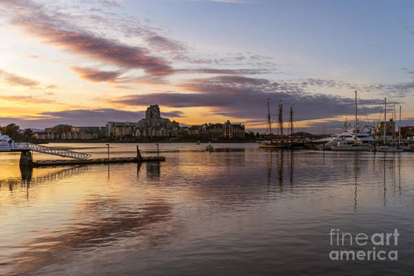 Photograph - Inner Harbour by Carrie Cole