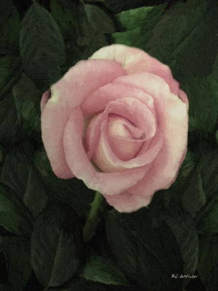 Painting - Innocent Blush by RC DeWinter
