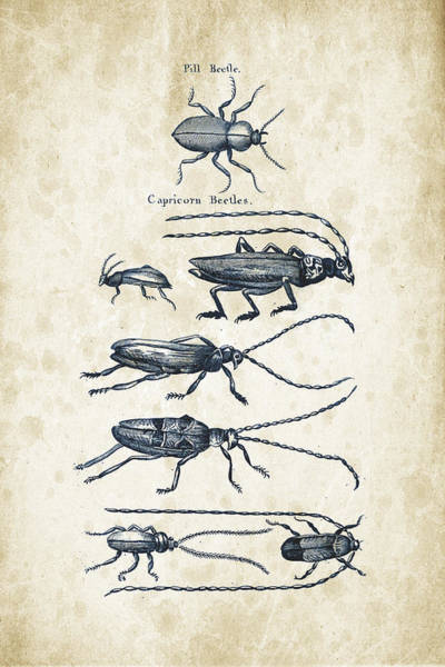 Wall Art - Digital Art - Insects - 1792 - 03 by Aged Pixel