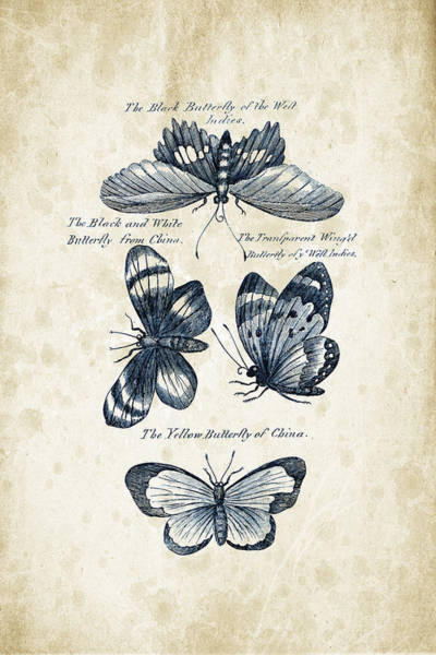 Wall Art - Digital Art - Insects - 1792 - 13 by Aged Pixel