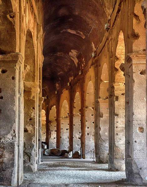 Photograph - Inside Colosseum Italy by Coleman Mattingly
