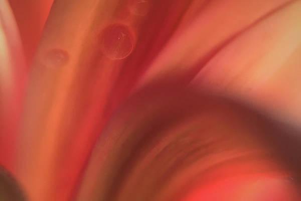 Inside Jupiter, Artists Rendition Art Print