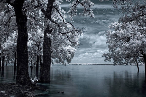Ir Photograph - Inside by Mike Irwin