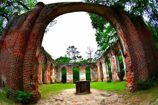 Photograph - Inside Old Sheldon Church Ruins by Lisa Wooten