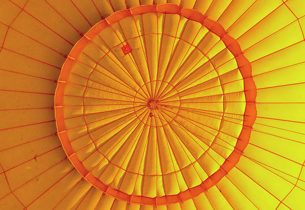 Photograph - Inside The Balloon by Tom Singleton