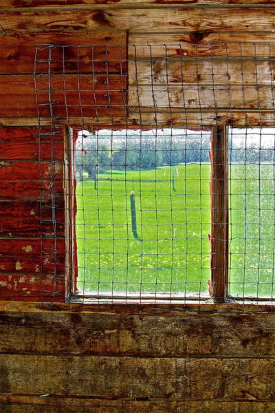 Photograph - Inside The Barn by Diana Hatcher