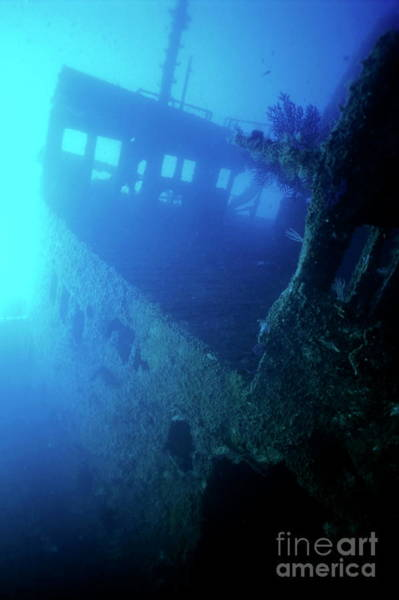 Wall Art - Photograph - Inside The Chaouen Shipwreck by Sami Sarkis