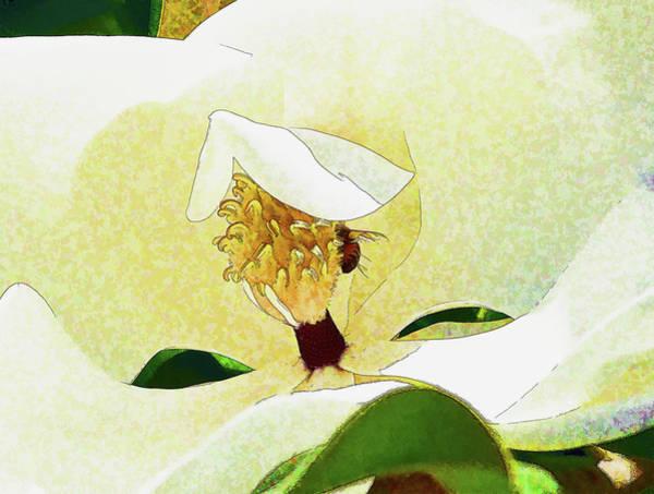 Wall Art - Digital Art - Inside The Magnolia Flower 1 Painterly by Linda Brody