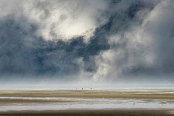 Photograph - Insignificant by John Whitmarsh