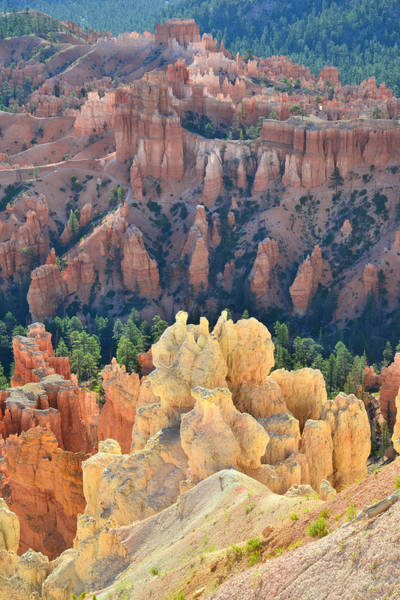 Photograph - Inspiration Overlook by Ray Mathis